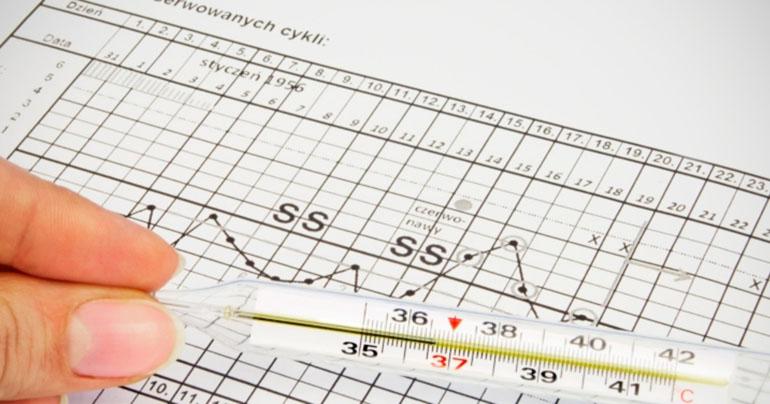 Базальная температура при планировании и ранней беременности