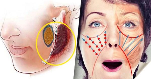 3 упражнения, которые подтянут опущенные щечки