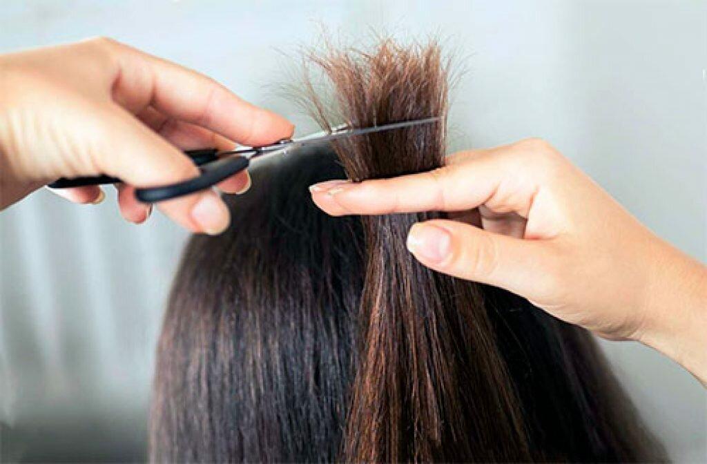 О каких правилах ухода за волосами важно помнить в осенний период