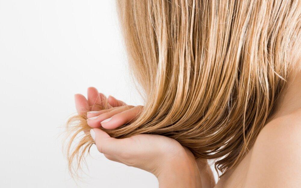 5 причин, по которым волосы быстро жирнеют и как это исправить