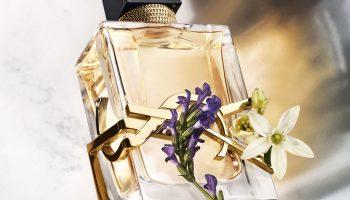 5 нюансов, на которые следует обратить внимание при выборе парфюма