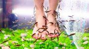 5 безумных процедур для красоты тела, которые делают многие звёзды